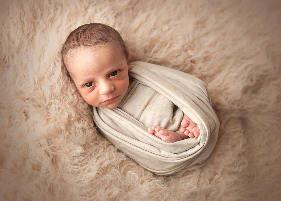 Posed studio newborn session in Cleveland boy neutral colors sibling shot
