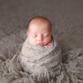 Baby newborn boy posed in prop using studio lighting by top newborn photographer Chelsey Hill Photography