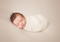 Posed newborn boy session