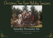 christmas mini family session on outdoor tree farm
