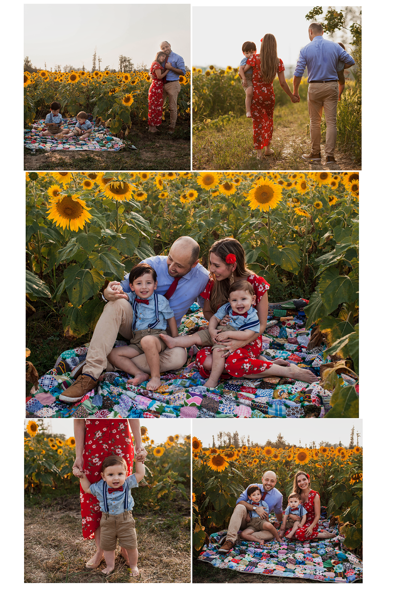 Cleveland family photographer sunflower mini sessions at Prayers from Maria Field of Hope